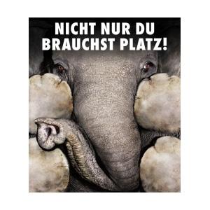 Zoo Augsburg : Elefanten